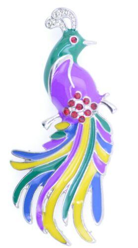 Hermoso y colorido ave del paraíso//Faisán Broche