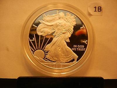 2012 American Silver Eagle .999 Fine Silver 1 Troy Ounce Lot 1B