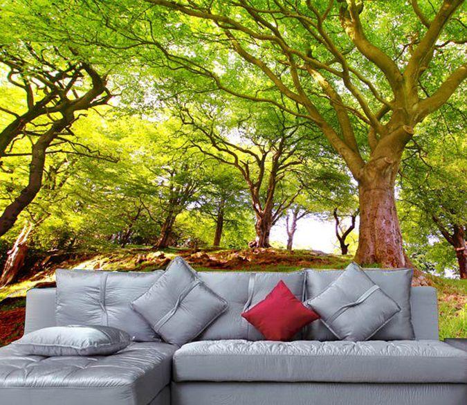 3D Warme und Helle Wald 73 Fototapeten Wandbild Fototapete BildTapete Familie DE
