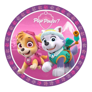 Paw Patrol Edible Kids Girls Birthday Party Cake Decoration Topper