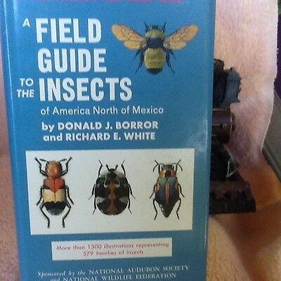 Peterson Field Guide to Insects 1970 D.J. Borror & R.E.White hardcover/dustcover