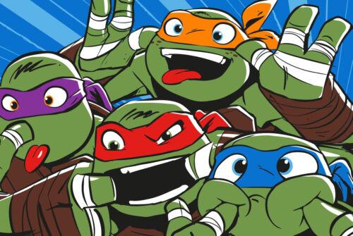 Extragroß Superweich Teenage Mutant Ninja Turtles Fleece Decke Bett Überwurf