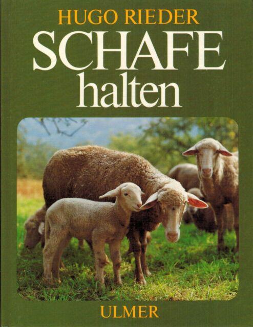 Hugo Rieder, Schafe halten, Schafhaltung Schafzucht, Verlag Eugen Ulmer 1984