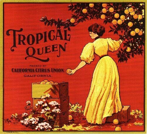 Los Angeles California Orange Queen Orange Citrus Fruit Crate Label Art Print