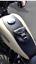Tankpad-Tank-chap-Harley-Davidson-Sportster-Sporty-883-1200-48-forty-eight-HD Indexbild 8