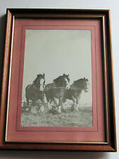 Interprint 1979 tres caballos de fuerza de trabajo caballos impresión no 5 Clydesdale 21X16 Cm
