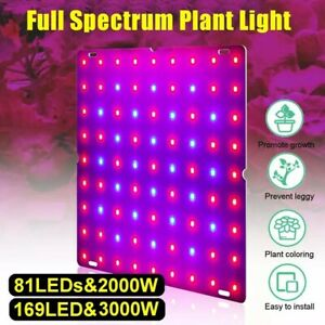 1000W Grow Light Led Full Spectrum All Stage Red/Blue Type A Indoor/Greenhouse