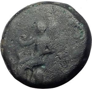 ELEUSIS-in-ATTICA-near-ATHENS-360BC-Triptolemos-Boar-Ancient-Greek-Coin-i64750