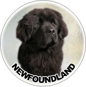 2-Newfoundland-Car-Stickers-By-Starprint