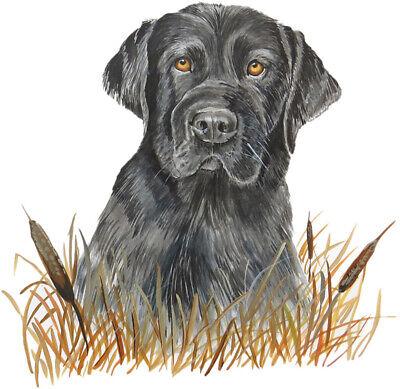 Lab cattails hunt dog Labrador duck retriever sticker truck Vinyl decal