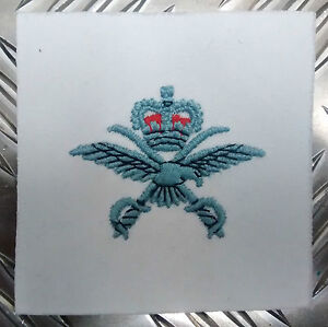 Genuine-British-RAF-PTI-Physical-Training-Cloth-Badge-Patch-MOD-PT-NEW