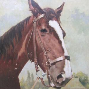 FUNKE-Bernd-1902-1988-PFERD-Portrait-Hannoveraner-HORSE-PAINTING-ART