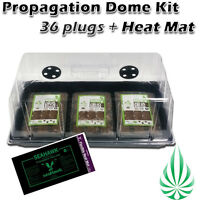 Hydroponics Seeding Cloning Dome Tray Lid With 36 Cells Coco Plug And Heat Mat