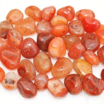 Brazilian Carnelian Agate Tumble Polished Gemstones  EMPOWER 1//3 LB