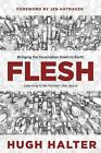 Flesh: Bringing the Incarnation Down to Earth by Hugh Halter (Paperback / softback, 2014)