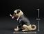 dog 1//6 Soldier model accessories,Bulldog pug