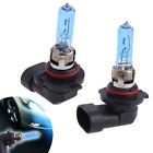 Sale 2pcs 9005 HB3 Car Halogen Headlight Lamp Bulbs Bright White 12V 55/100w