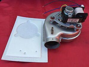 Baxi-Solo-3-30PFL-40PFL-50PFL-amp-PFL-System-Boiler-Fan-Assembly-amp-Gasket-246051