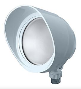 Bronze RAB Outdoor LED LFLOOD Floodlight Model X34--55L//120 5000K
