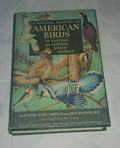 Old-Book-Natural-History-American-Birds-Eastern-Central-N-Amer-Illustrated-guide