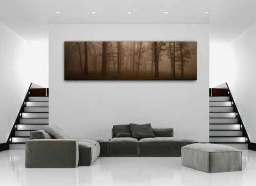 Forest of Dark Sorrow Panoramic Picture Canvas Print Home Decor Wall Art