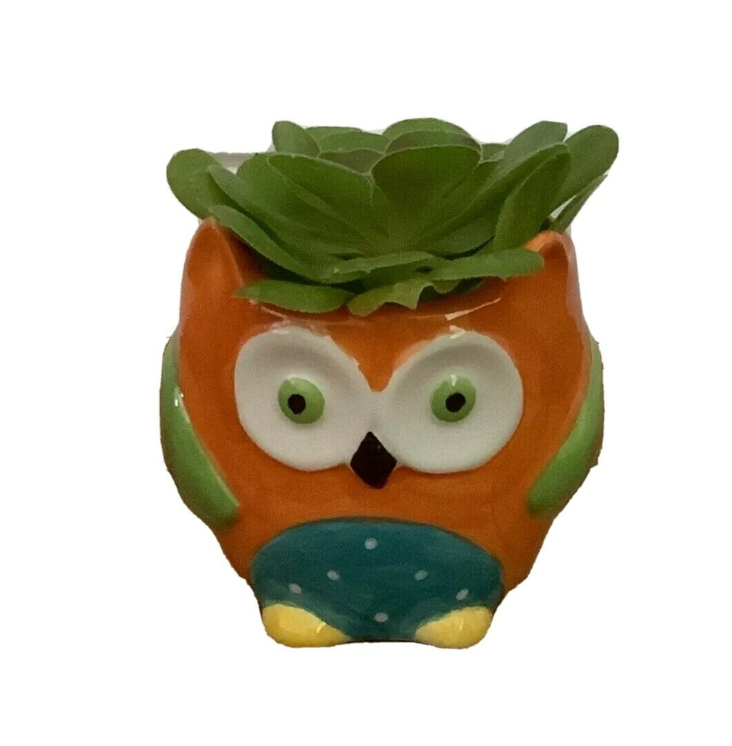 Ceramic Owl, Plant Herb Succulent Nursery Indoor Plant Pot New without Tags