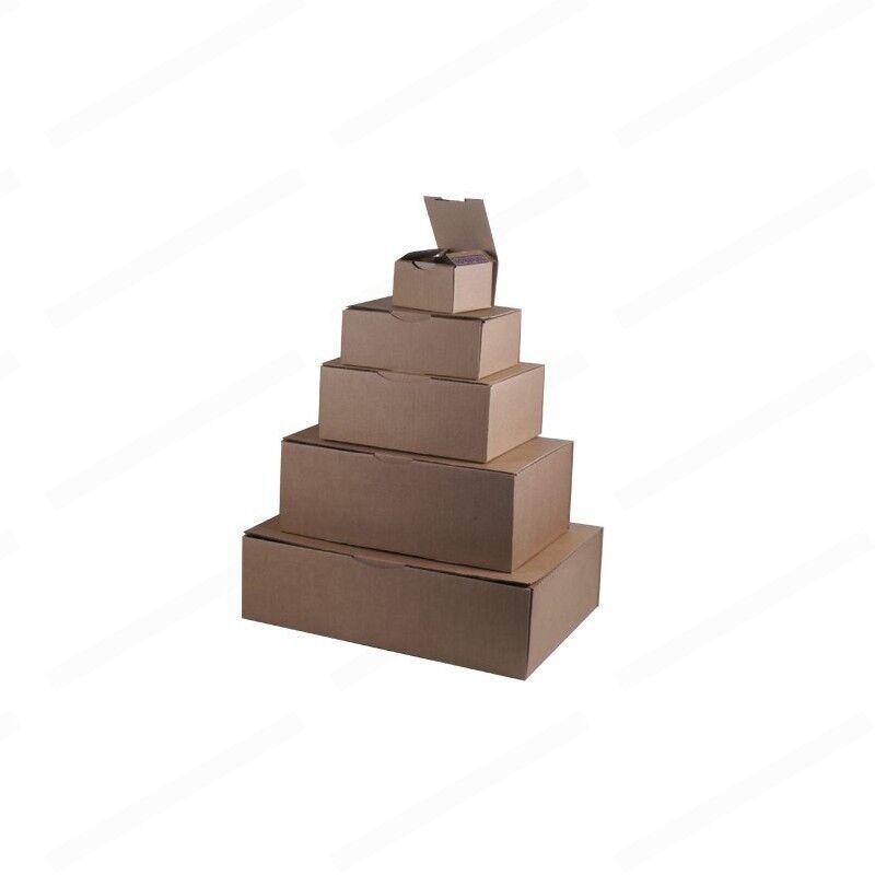 50 BOITES POSTAL 25 X 10 X 100 10 cm ou 250 x 100 x 100 X mm be7cf0