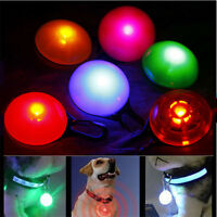 LED Safety Dog Cat Collar Night Light Flashing Buckle Pet Luminous Tags & Charms