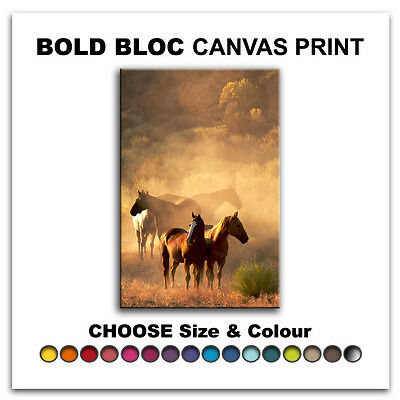 Horses Wildlife ANIMALS  Canvas Art Print Box Framed Picture Wall Hanging BBD