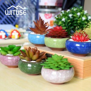 Ice-Crack-Glaze-Flower-Ceramics-Succulent-Plant-Pot-Office-Flowerpot-Decor