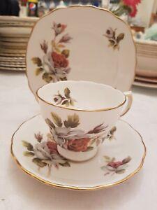 Details about Vintage Royal Vale antique rose bone china teacup saucer  plate trio vgc