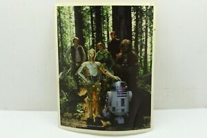 Vintage 1983 Lucasfilm Star Wars Official Fan Club Picture Endor Scene with Cast