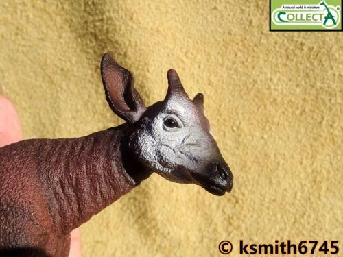 Nuevo CollectA Okapi plástico sólido Juguete Animal Salvaje Zoológico a rayas de África