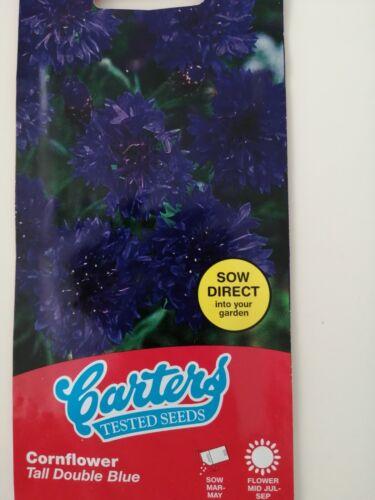 CARTERS CORNFLOWER TALL BLUE FLOWER SEEDS 100 EXP 7//2023