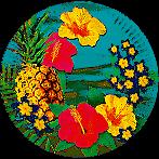 6-Assiettes-en-Carton-HAWAII-23cm
