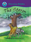 The Storm by Peter Bently (Paperback, 2010)