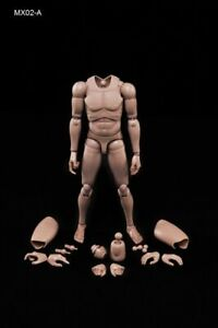 1-6-Flexible-Europe-Skin-Male-Body-Parts-amp-Pieces-Fit-for-12-034-Male-Figure-Model