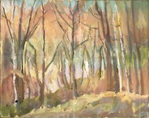 Russischer-Realist-Expressionist-Ol-Leinwand-034-Herbst-034-50x40-cm