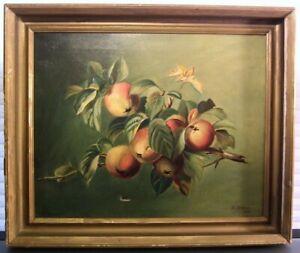 Antique Oil Painting Still Life Fruit H. Stehlin 1905 Fine Art