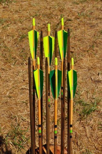 épines et poids assorties douzaine Packs Premium bois flèches