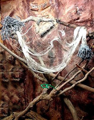 Stellnetz,Fischnetz,Spiegelnetz,3 Wandig Finland Netz 1,8x10 m,40 mm Top preis