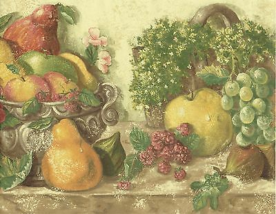 APPLES GRAPES PEARS PLANTS AND LEAVES FRUITS Wallpaper bordeR Wall ...