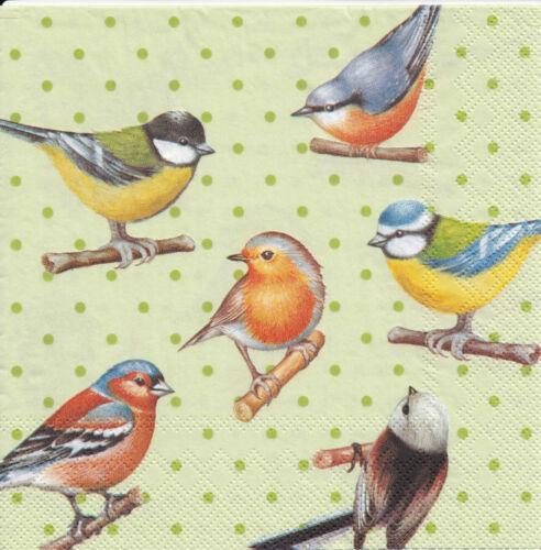 4 Lunch Servietten Birds and Dots basteln Birds heimische Vögel grüne Punkte