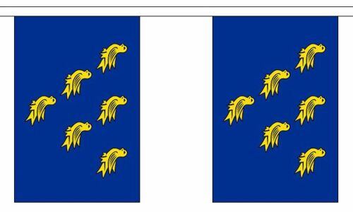 20 flag bunting Sussex British County 6 metre long