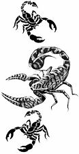 Scorpion Sex 2 Temporary Fake Tattoos Waterpoof Passion Solitude Art Transfer