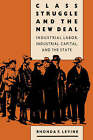 Class Struggle and the New Deal: Industrial Labour, Industrial Capital and the State by Rhonda F. Levine (Paperback, 1988)