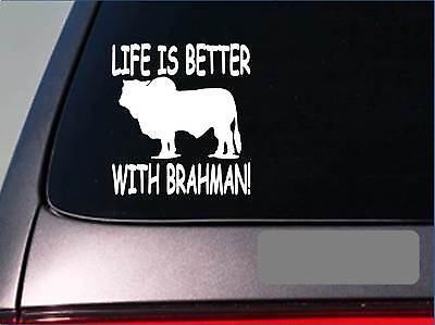 100% QualitäT Leben Ist Mit Brahman F429 Sticker Aufkleber Rinder Schwarz Texas Rindfleisch Bequem Und Einfach Zu Tragen