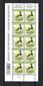 BELGIQUE-BUZIN-OISEAUX-BIRDS-VANNEAU-HUPPE-BLOC-10V-MNH