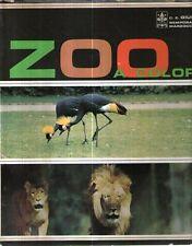 S10 Zoo a colori Testo di Mikolas Foto di Marco Giunti 1969