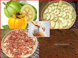 Garcinia cambogia linea diet recensioni image 2